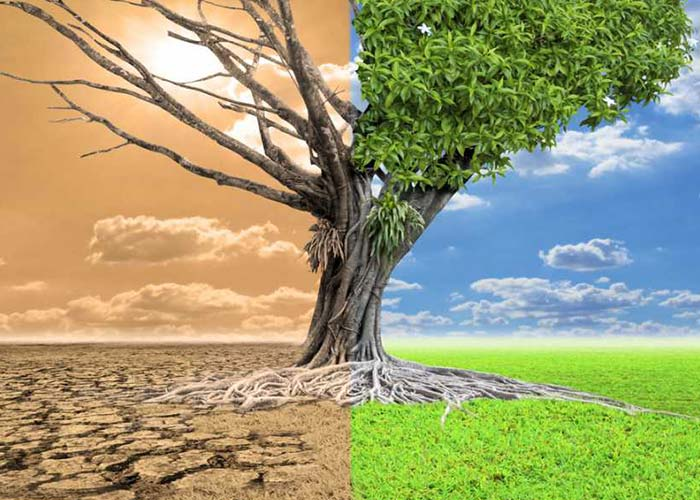 global warming in india essay