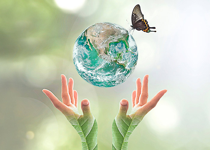 essay on effects of global warming on earth Essays related to global warming 1 the effects of global warming global to be that of all of the states on earth and is a huge global common.