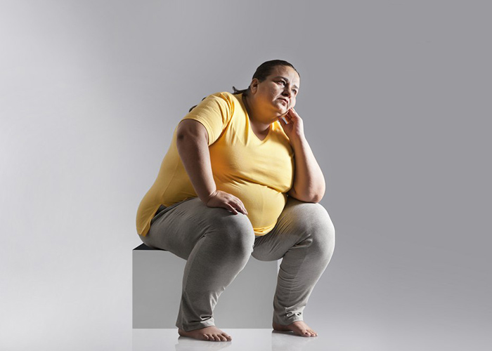 essay on obesity for children and students obesity essay 2 300 words