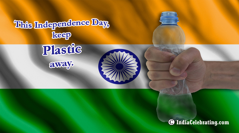 This Independence Day Keep Plastic Away