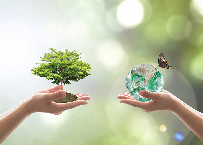 World Forestry Day 2019 Date Information History