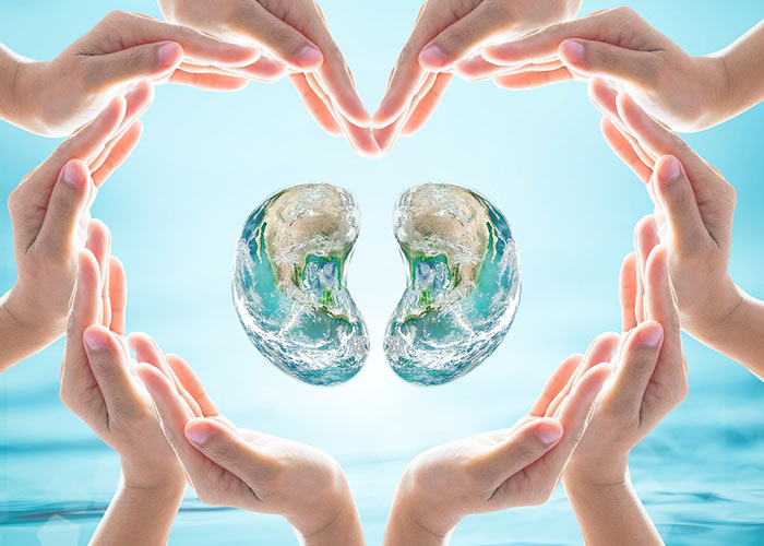 World Kidney Day 2019 – Date, Information, History