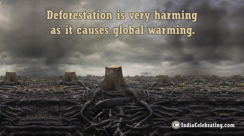 Deforestation is very harming as it causes global warming.