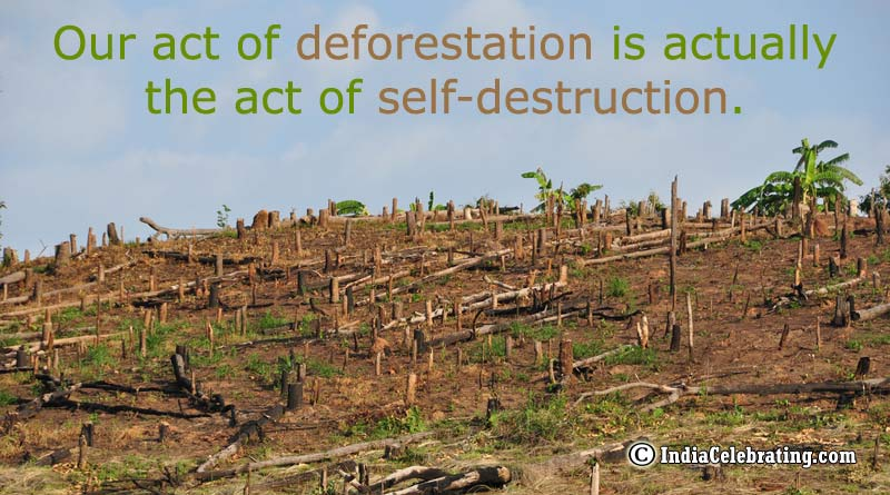 Our act of deforestation is actually the act of self-destruction.