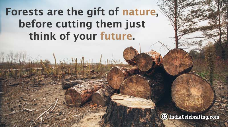 Forests are the gift of nature, before cutting them just think of your future.