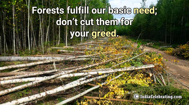 Forests fulfill our basic need; don't cut them for your greed.