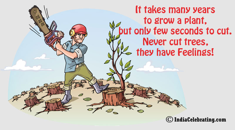 It takes many years to grow a plant, but only few seconds to cut. Never cut trees, they have Feelings!