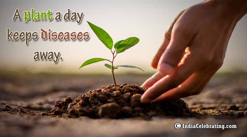 A plant a day keeps diseases away.