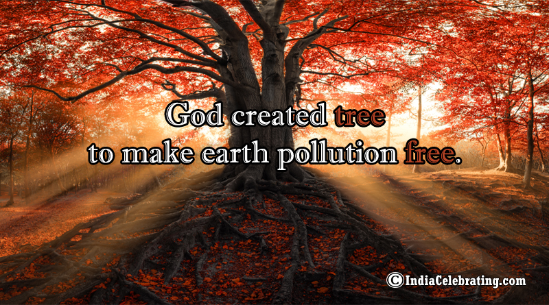 God created tree to make earth pollution free.