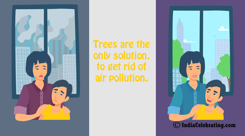 Trees are the only solution, to get rid of air pollution.